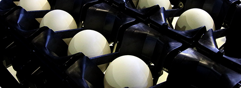 自动蛋品分级包装系统