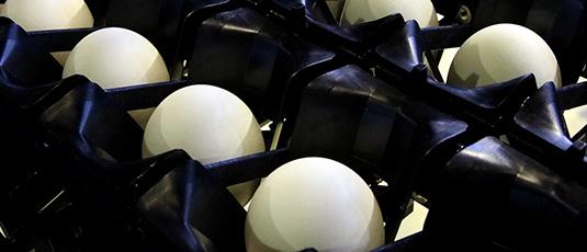 自動蛋品分級包裝系統
